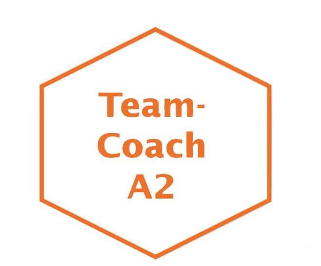 Teamcoach Modul I