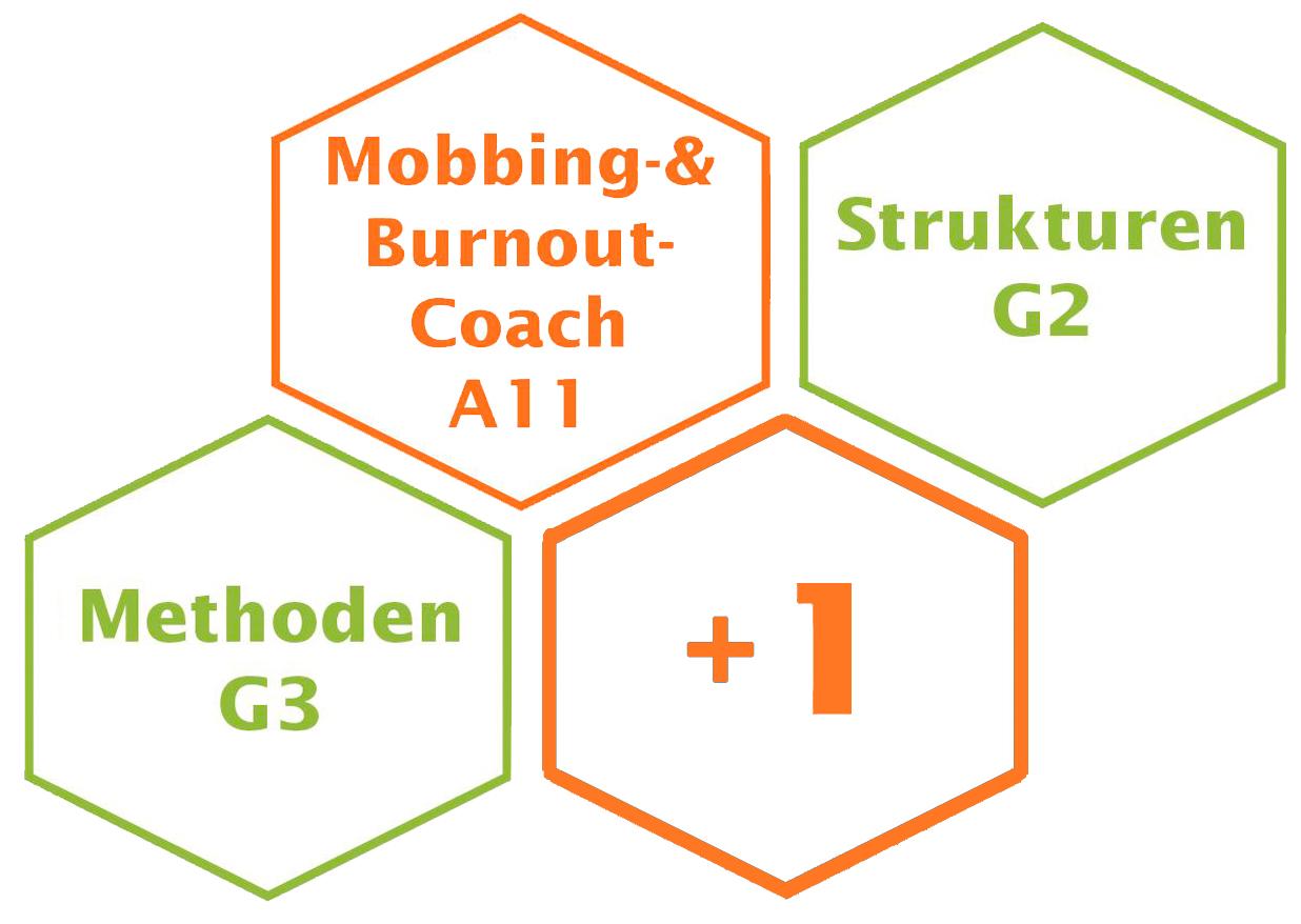 Mobbing und Burnout Coach Ausbildung