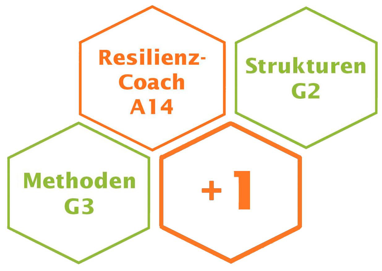 Resilienz-Coaching-Ausbildung