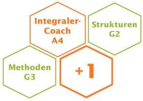 Ausbildung zum Systemischen Coach