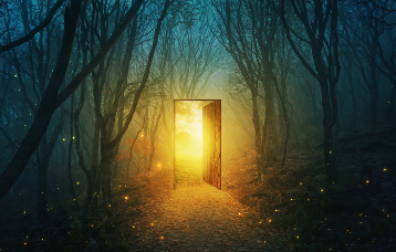 Tür im Wald