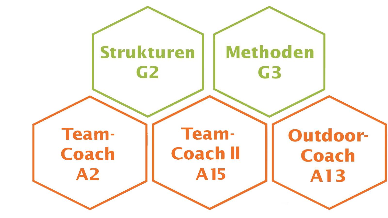 Teamcoach Ausbildung