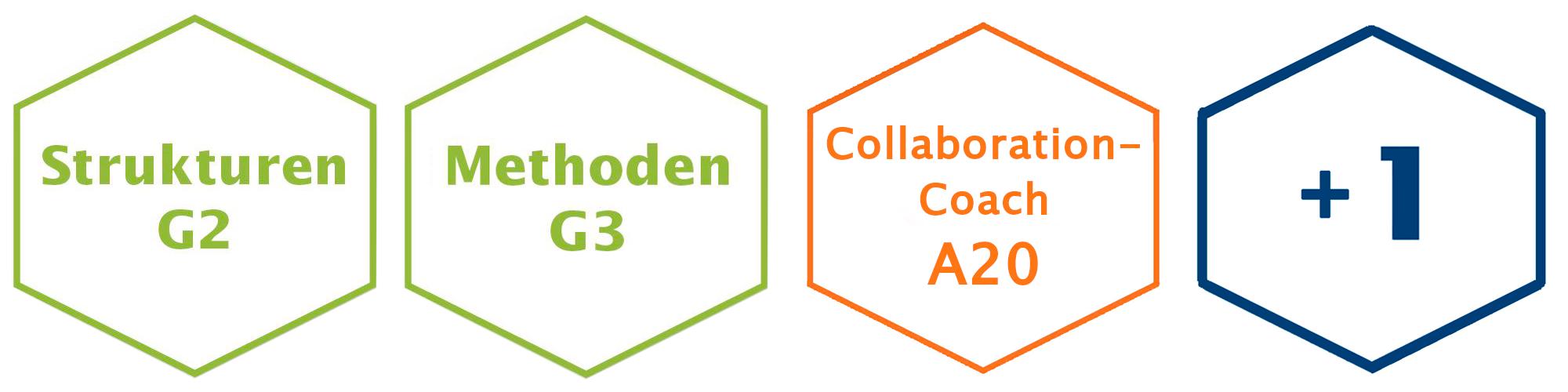 Collaboration-Coach Ausbildung Module