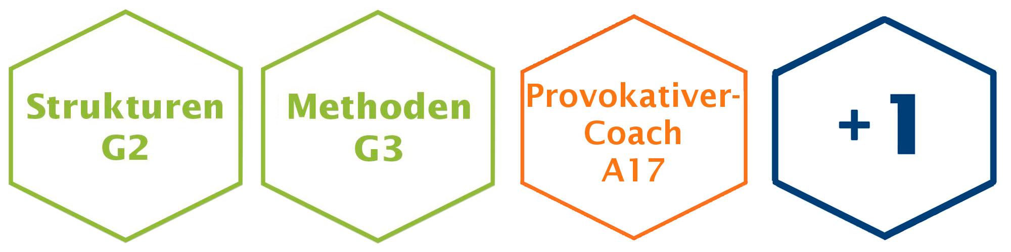 Provokativer Coach Ausbildung LNLPT Module