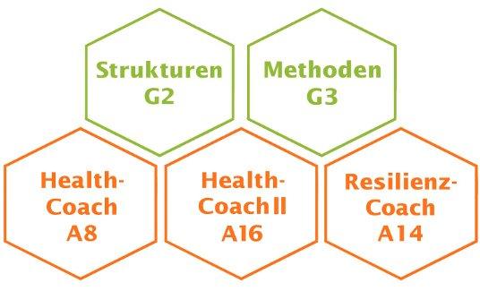 Health Coach Module