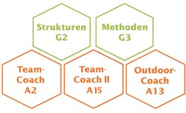 Teamcoaching Ausbildung Module