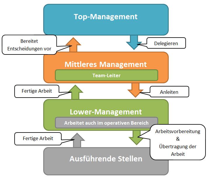 Management Unterteilung