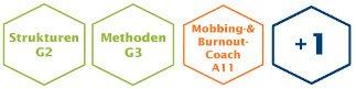 Burnout Coach Ausbildung Module