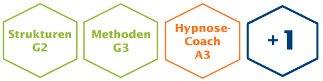 Hypnose Coach Module