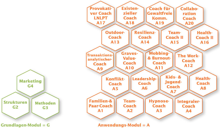 Modulare Coaching-Ausbildung