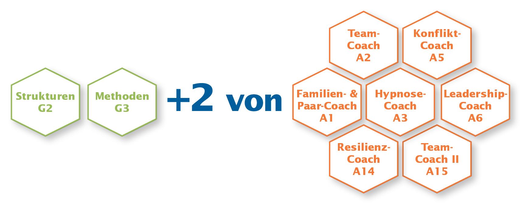 DVNLP-Coach Module