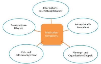 Strukturen Coach Modul