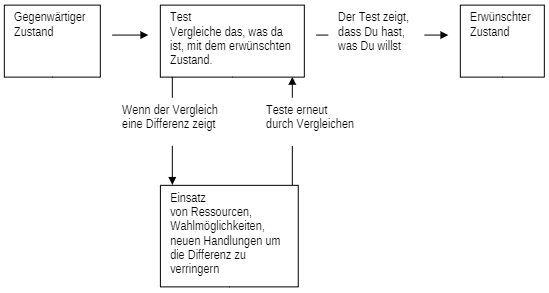 Sinnbildliche Erklärung des TOTE-Modells