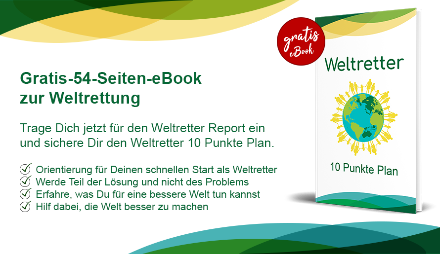 Weltretter Ebook